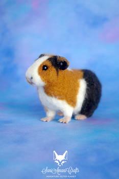needle felted guinea pig pet portrait I