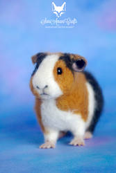 needle felted guinea pig pet portrait II by SaniAmaniCrafts