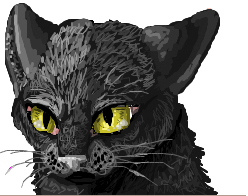 cat on iscribble by 9tailsfoxyfoxy