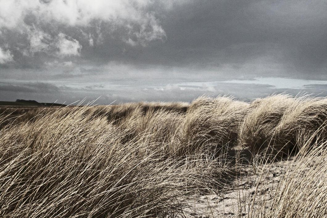 winter beach by knollorulez