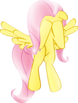 Don`t Cry, My Fluttershy