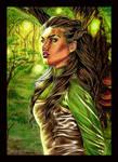 Enchanted forest: Half-Elf