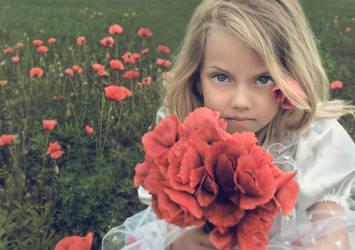 Poppy Girl 3   Stock by little girl stock