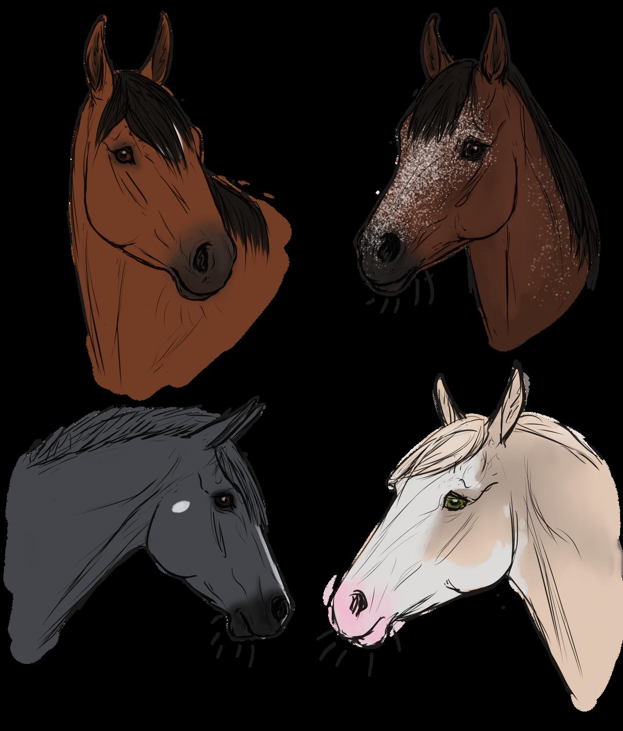 Halloweeny headless horses