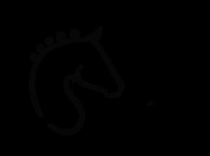 Swba Logo by Helsinge