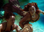 Curious mermaids