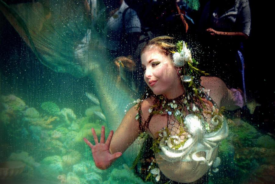 White mermaid by MerBellas