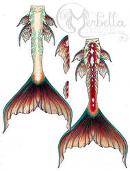 Mermaid Tail Design Sketch by MerBellas