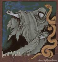 Lord Voldemort by Omnimalevolent