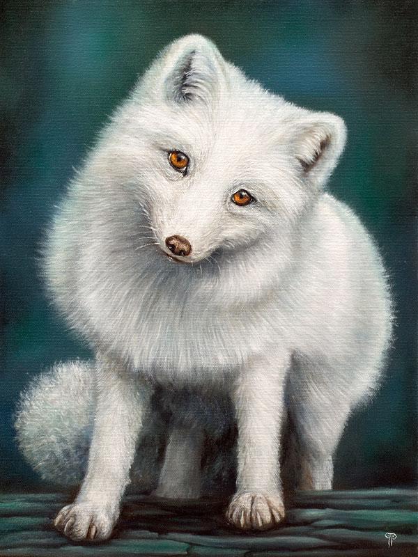 Moonlight by dimwolf