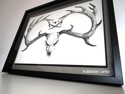 Crane de cerf by Adelaide-Camp