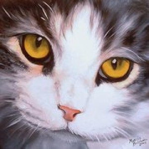 adrireale's Profile Picture