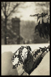 snowday 3 by rickster155