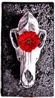 Flower And Bone