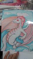San Japan Albino Dragon