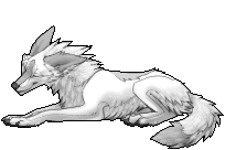 Another Free Coyote Mod by ReeviaLeWolf