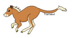 Fuschiabell's Profile Picture
