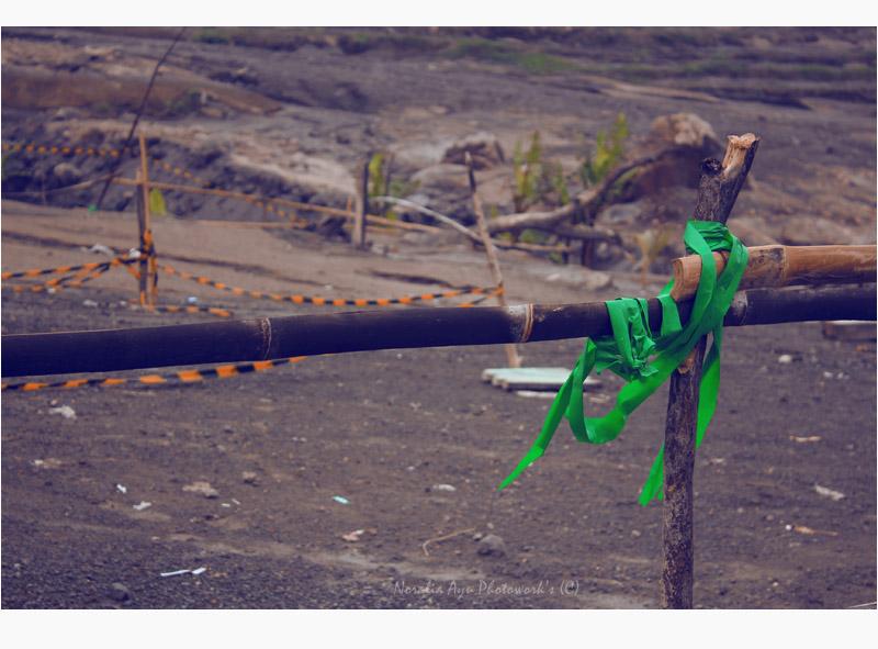 Merapi Eruption 7 by flowercastle