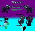 {Night Fall} Reference Sheet