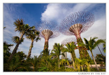 Gardens by the Bay, Singapore by thesolitary