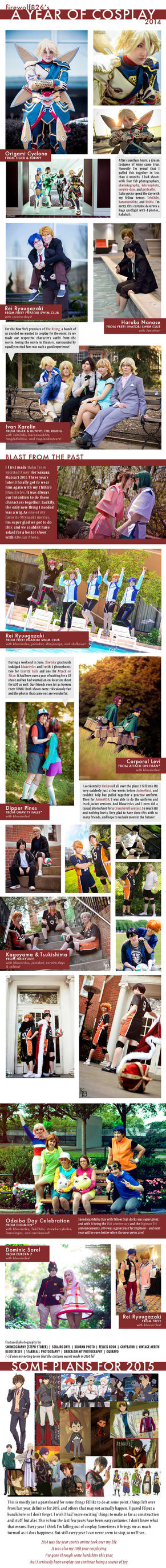 A Year of Cosplay 2014 by firewolf826