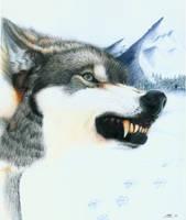 Jessie's Wolf by mattleese87