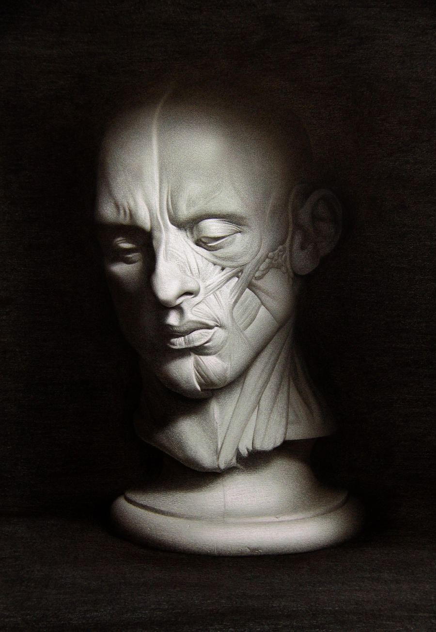 Half-flayed Man by pedramfh