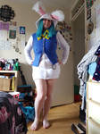 Bunny Costume Full Length