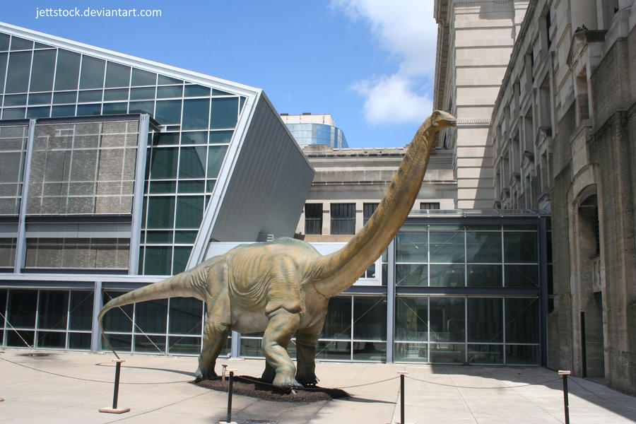 dinosaur 21 by jettstock