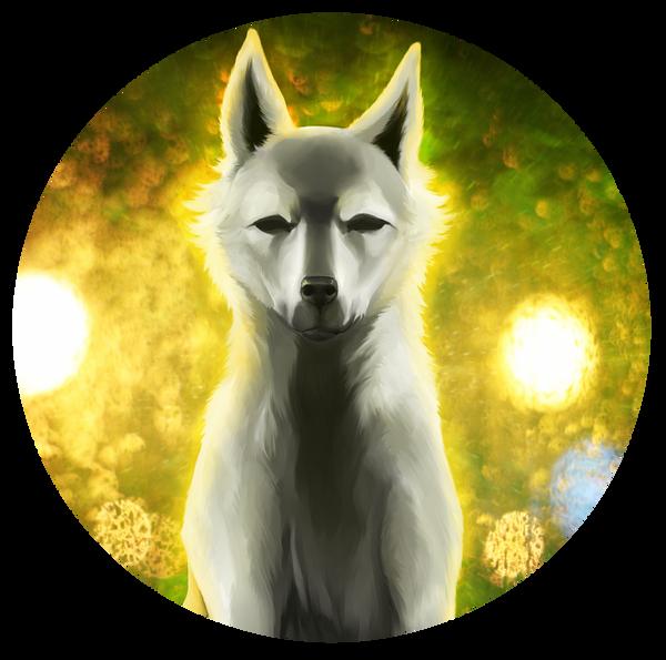 Ahalteke's Profile Picture