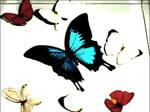 dead butterflies by robothearts