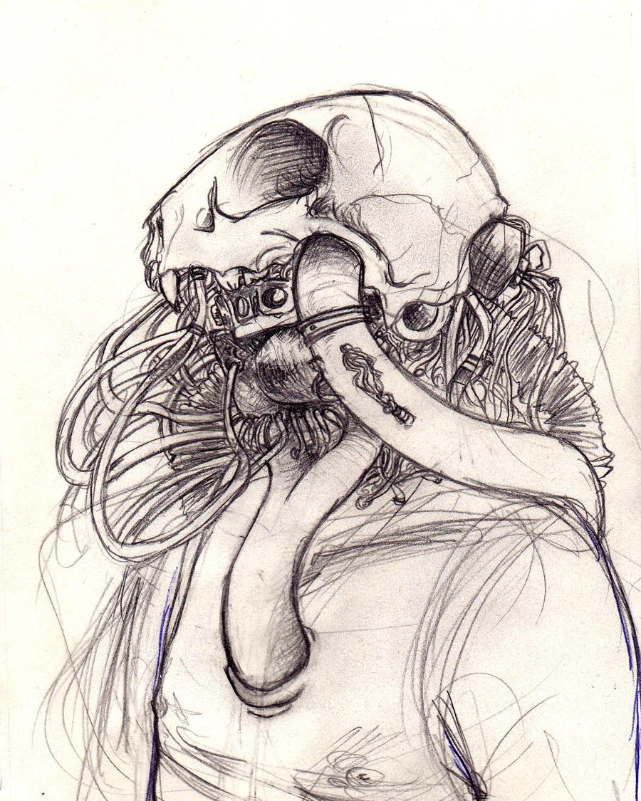 Cat skull 2 by ElOrOre on DeviantArt