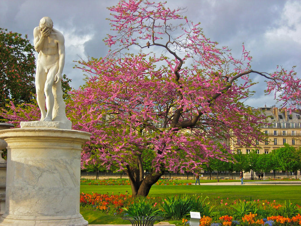 Paris jardin des tuileries by casiisla on deviantart for Tuilerie jardin
