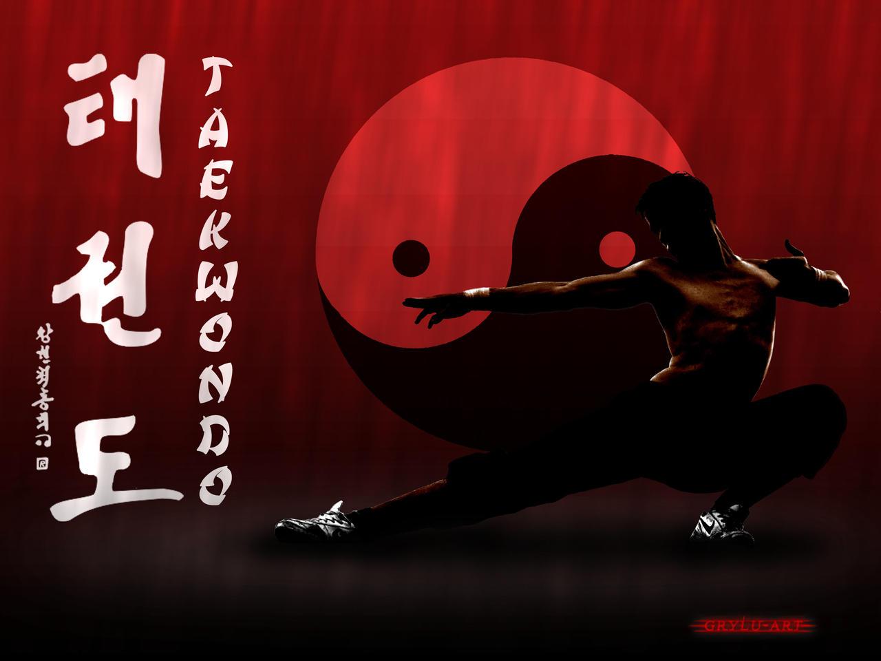 martial arts taekwondo by grylu3