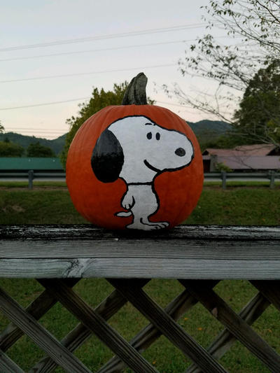 Snoopy Pumpkin by Dragonrider626