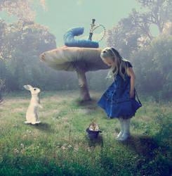 Alice in Wonderland by talewhisper