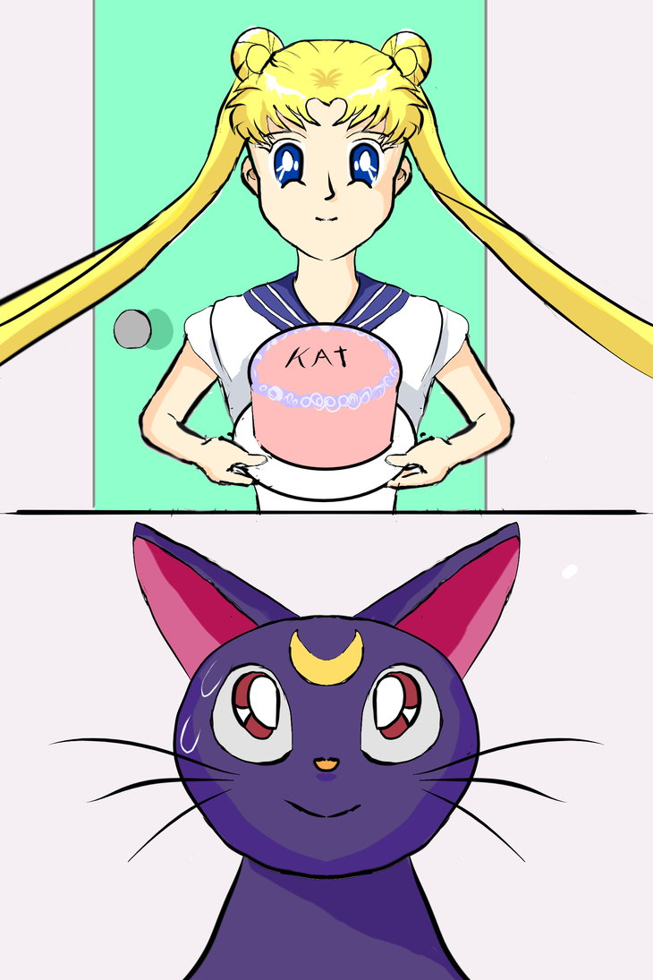 Sailor Moon Kat Birthday by Wandetta