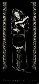 The Half-Blood Prince by Vizen