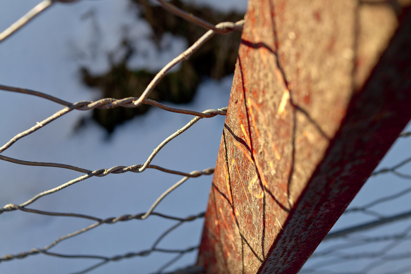 Rust by jorago