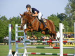 Show jumping 2