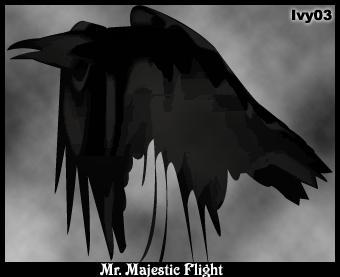 Raven Avatar by LostxPolitics