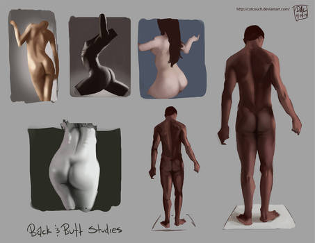 Back and Butt Studies