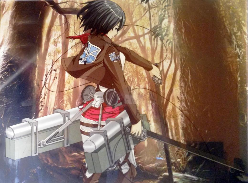 Mikasa by tenro1