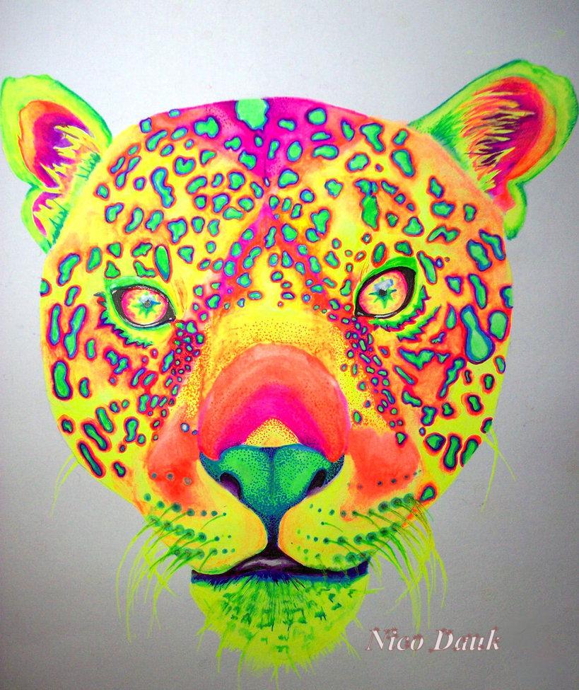 Leopard by nicostars