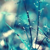 My blues... by incredi