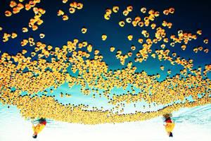 Don't fall yellow duckies.