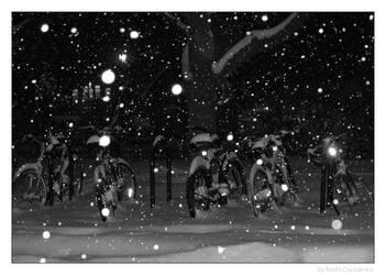 Portrait of winter by incredi