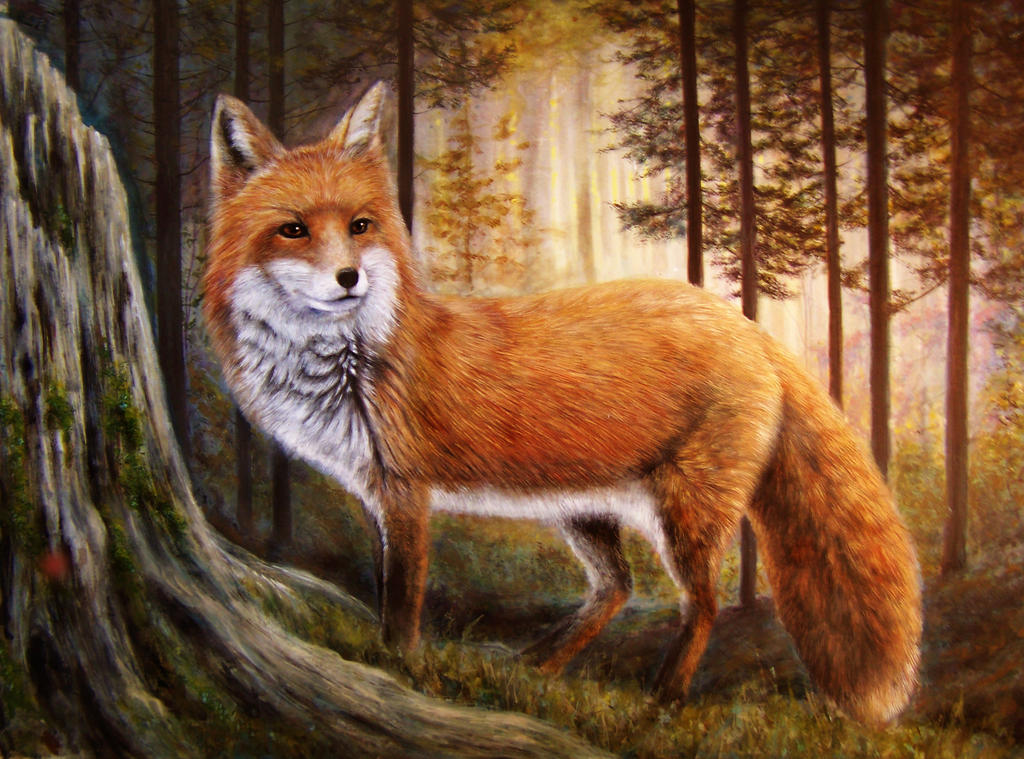 the fabulous mr fox by suqumish