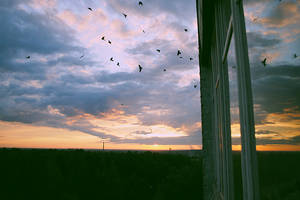 Magic of my balcony by SaitouBou