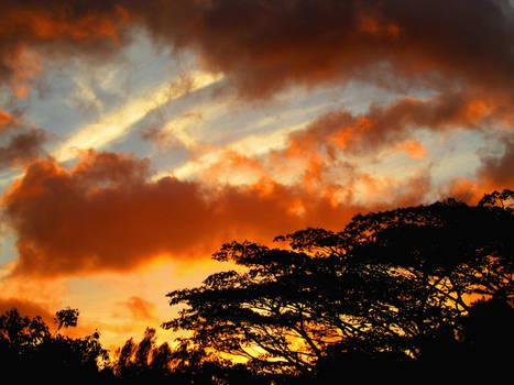 Firey Sun Set 2